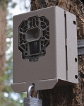 STEALTH CAM SECURITY / BEAR BOX FOR DS4K