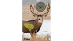 Muley Target (3 Pack)