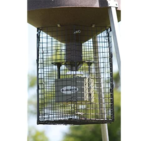 Boss Buck Varmint Cage Large Deluxe Round