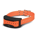 SportDOG Brand® Contain + Train™ Add-A-Dog® Collar