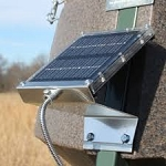 BOSS BUCK 12V Universal Solar Panel for Feeders